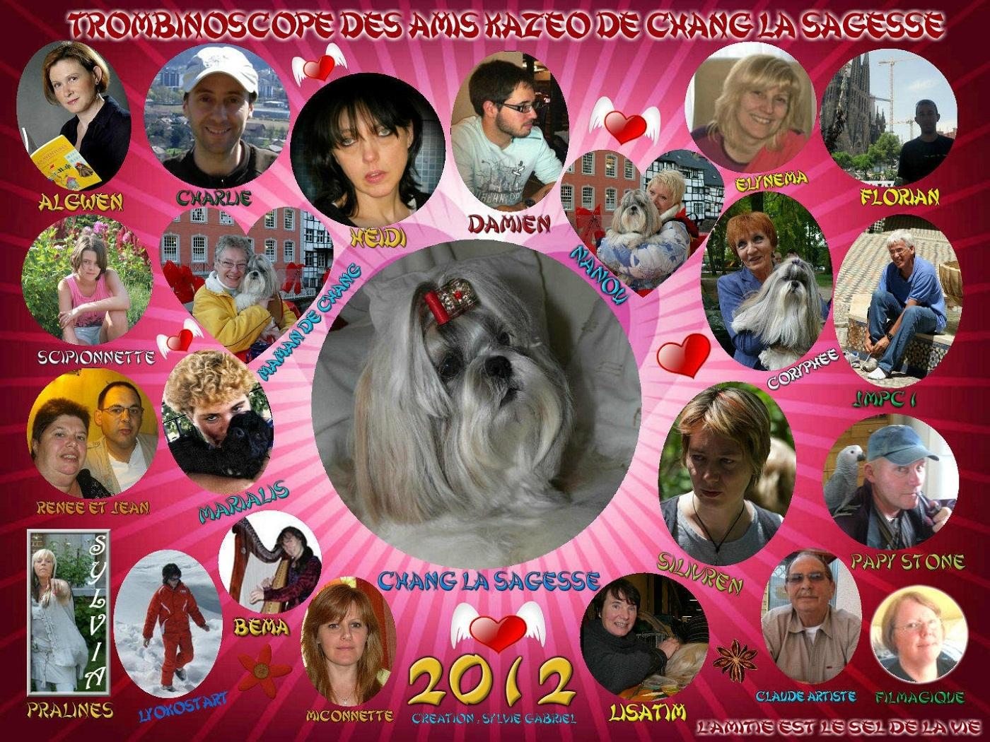collage_2012-01-08_17-55-59.p