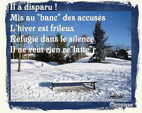 Banc-neige 4