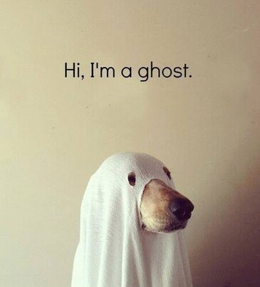 Ghost....