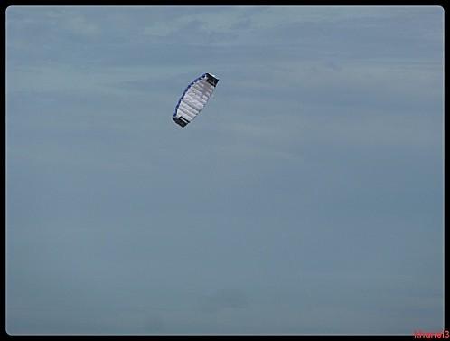sauternes (246)