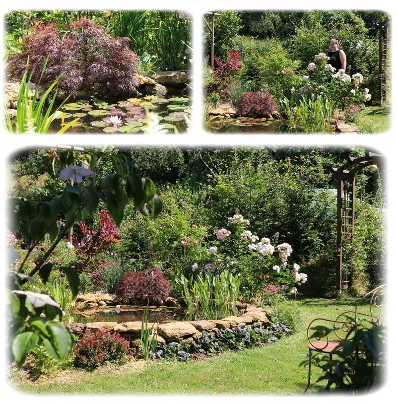 Le Jardin Sainte-Anne ... ou le Jardin des Superlatifs