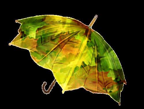 l'automne : 23 septembre