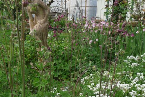 Le jardin m'inspire