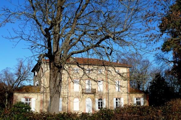 v08---Arbre-et-maison.JPG