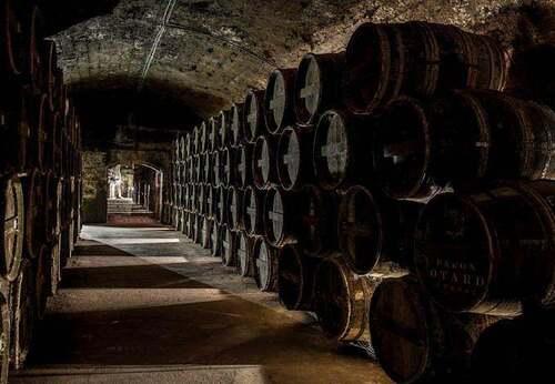 Cognac (Charente)
