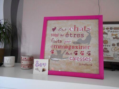 "SAL "" Les Chats"" - 21"