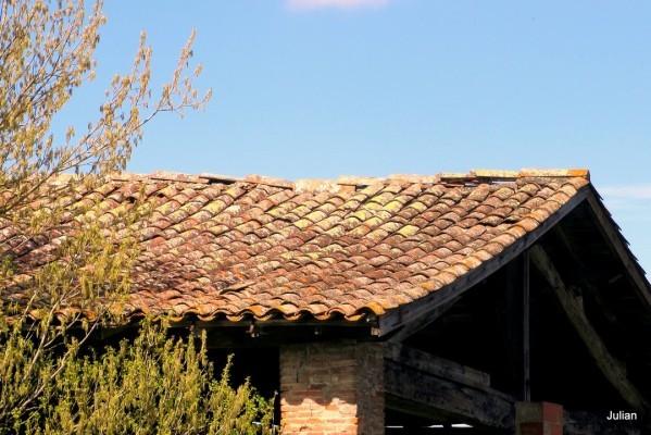J12---Vieux-toit.JPG