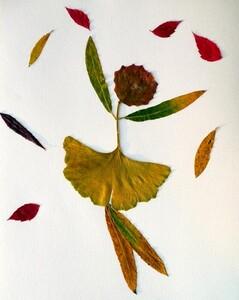 """Mon """"Jardin"""" à la belle saison"""