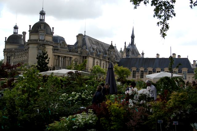 Chantilly (2/2)