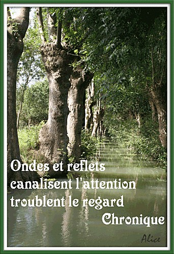 vendee-canaux-3-.gif