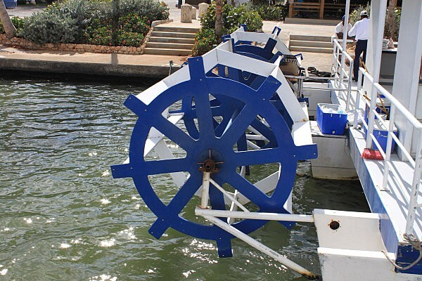 sur le fleuve Chavon (2)