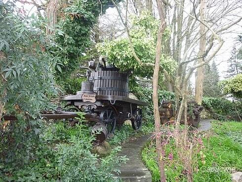 Le jardin des lutins