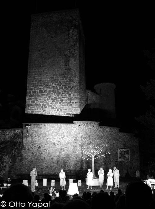 festival-aurillac-2012-21.jpg