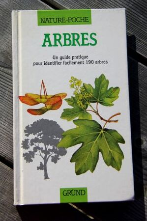 Roseraie - Boîte à livres