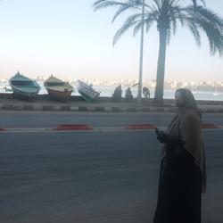 Alexandrie (décembre 2010)