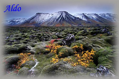 PPS Balade Islandaise