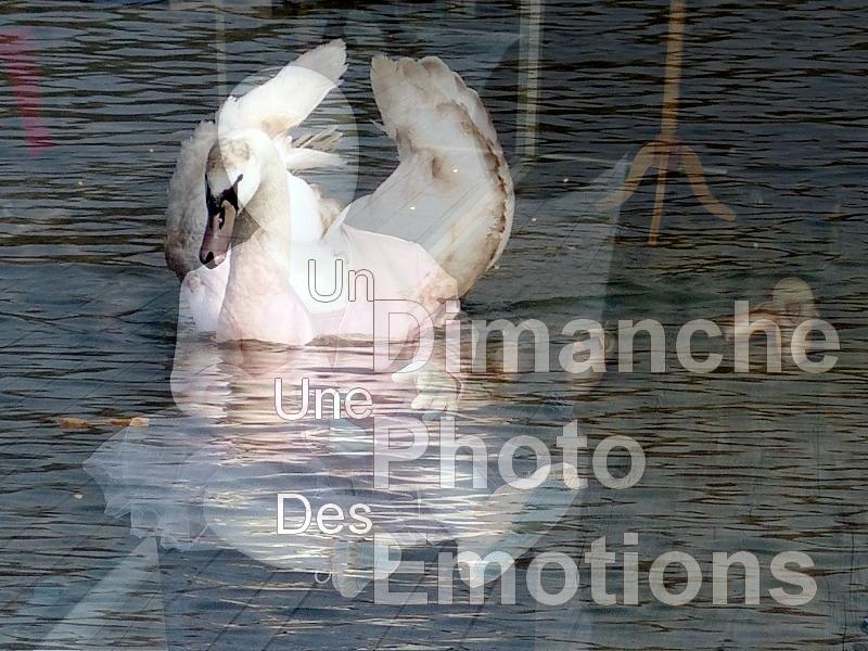 Metz / La photo du dimanche 5 avril 2015...