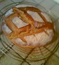 Sans le paysan, aurais-tu du pain ?  de Jean AICARD