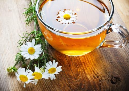 Fleurs cultivées : Marguerite