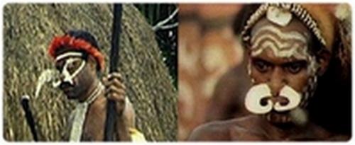 Tous les deux ou trois ans, les Dani d'Indonésie célèbrent le Mauve, festival au cours duquel les garçons sont initiés, les mariages scellés, les vieilles querelles oubliées et les esprits apaisés par des offrances de porcs
