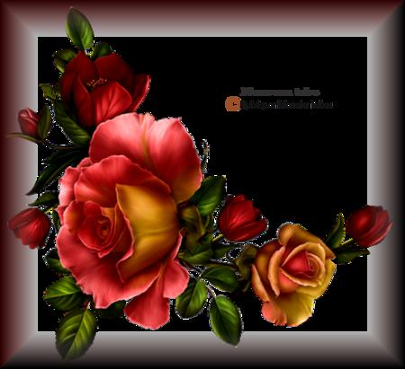 Tube fleurs 2912