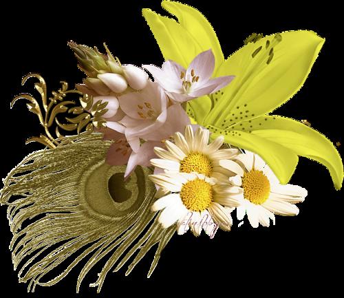 حصري لعيون سكرابز بالوان الربيع
