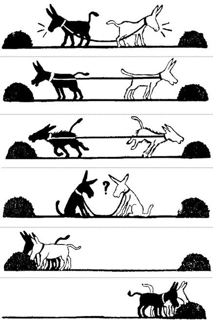 La coopération contre la concurrence