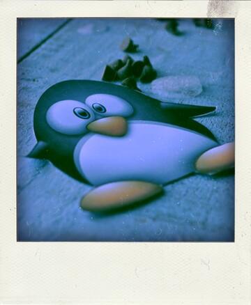 Pinguoins