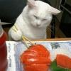 Ce soir c'est sushis !