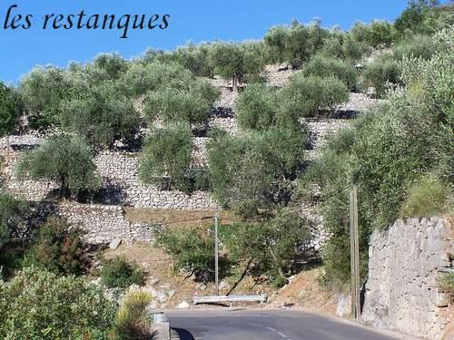COTE D'AZUR : Villes et Villages au pied des montagnes.