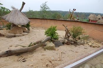 Zoo Osnabruck d50 2012 061