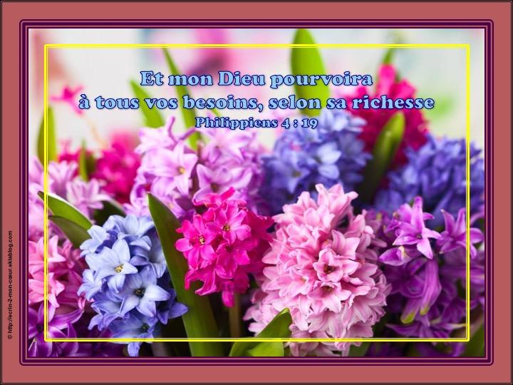 Et mon Dieu pourvoira à tous vos besoins - Philippiens 4 : 19