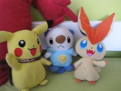 Mes peluches Pokémon