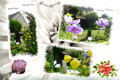 Photos  Jardin Créat