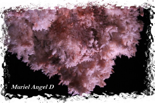Au Coeur D'Une Grotte