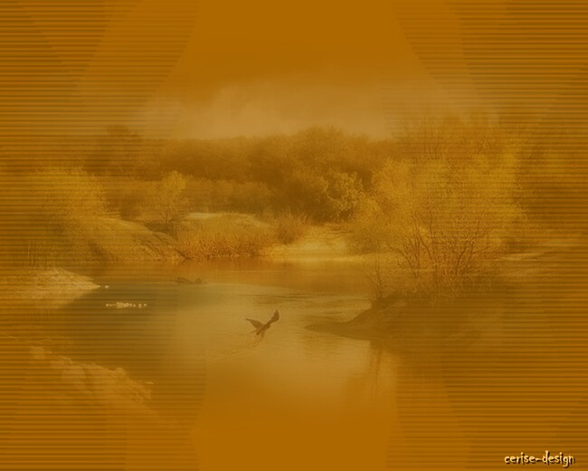 design les marais à l'automne