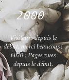 2000 visiteurs.