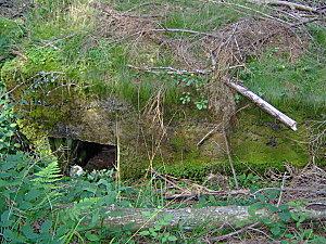 col de engin et sentier bunkers 018