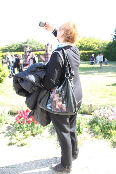 Fleurs jardin et La Torche 044