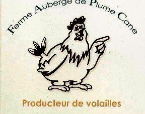 plume_cane-copie-1.jpg