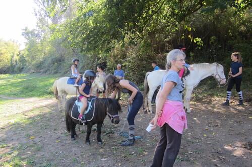 cheval mercredi 27 sept 2017