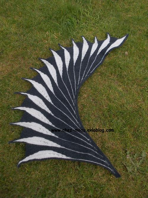 Dreambird, oiseau de rêve