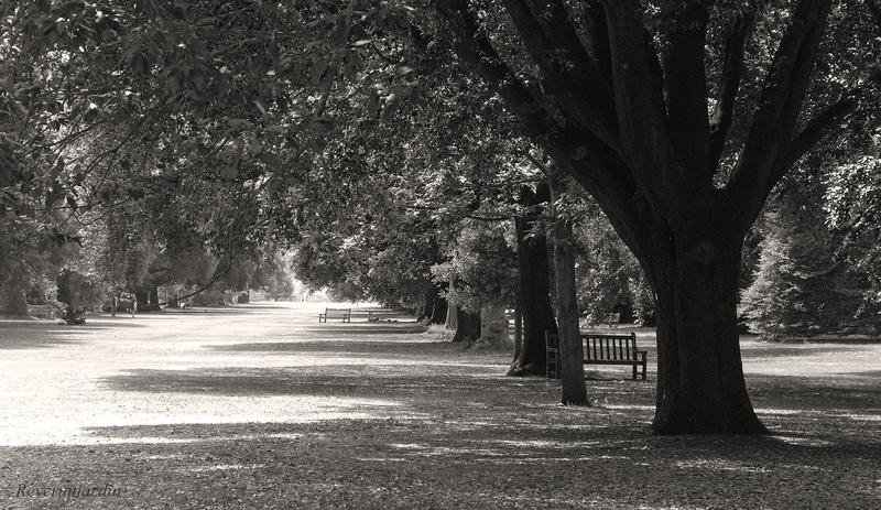 Kew Gardens 2