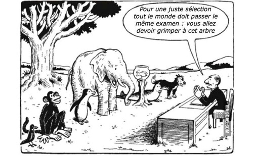 Les intelligences multiples: tous intelligents ! | Bruno HOURST