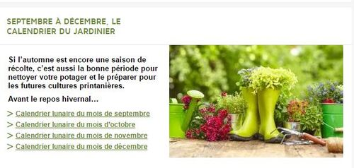 Septembre à décembre, le calendrier du jardinier