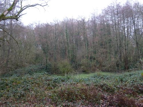Le château de Puy-Guyon (2° partie)....