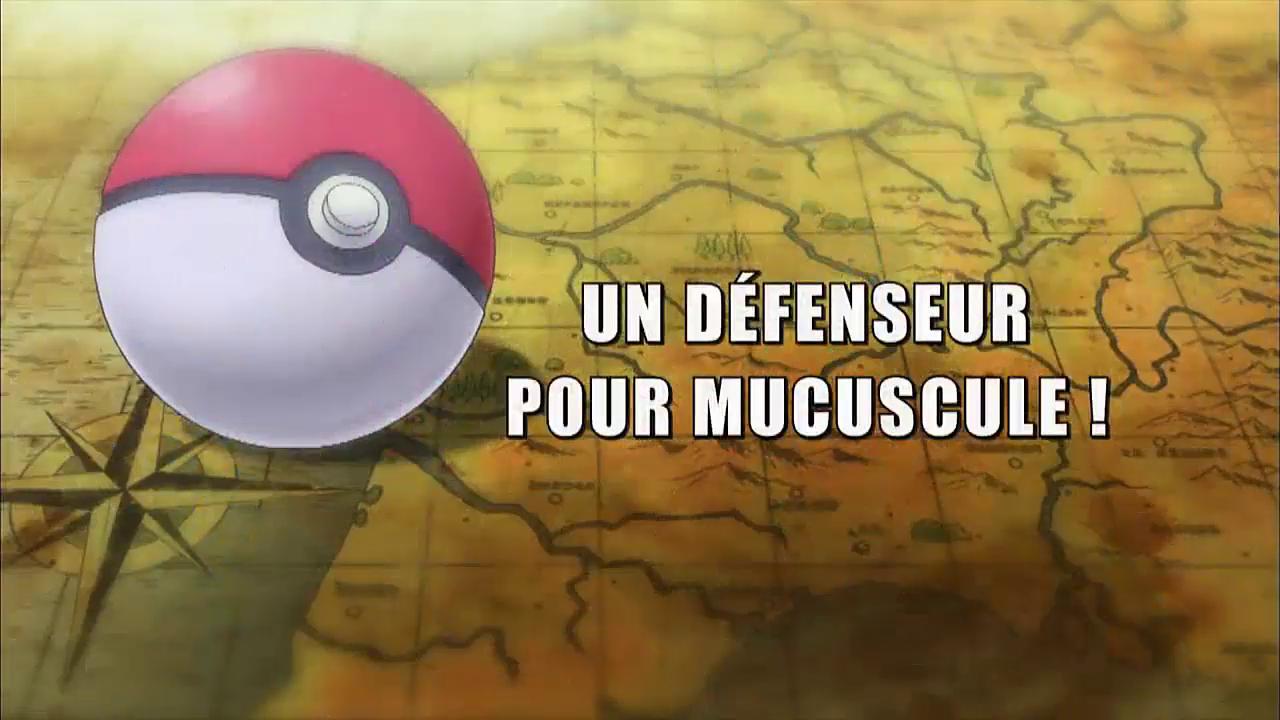 Pokémon - 18x08 - Un défenseur pour Mucuscule !