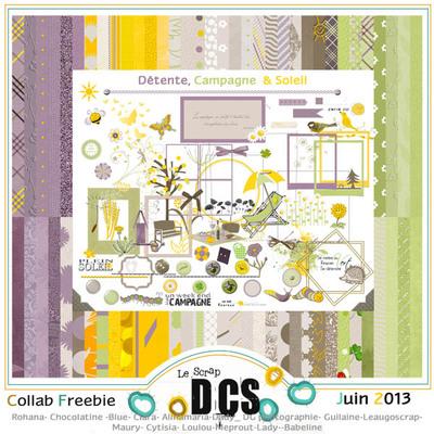 DCS: Détente,Campagne & Soleil