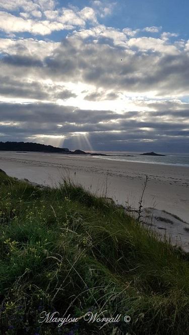 Bretagne : Pointe du Cap Fréhel 3/3