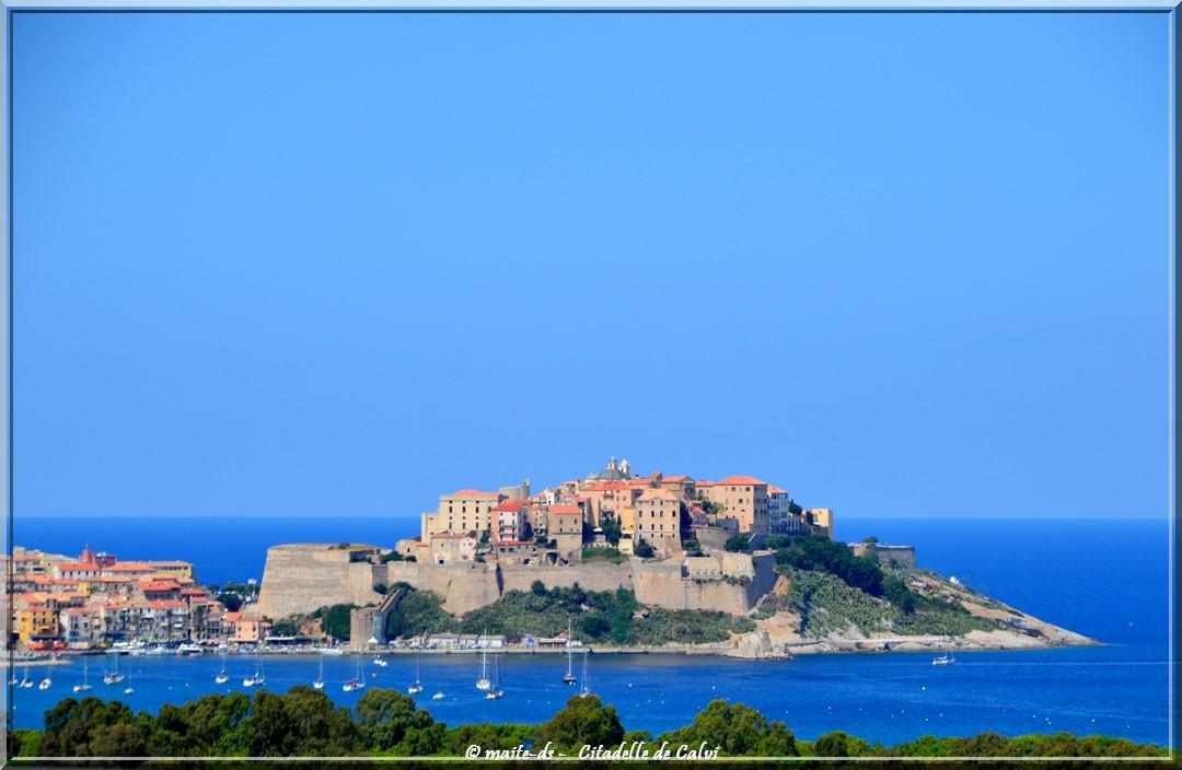 Calvi et sa citadelle - Corse
